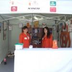 Feria del Comercio y Servicios de Torrijos